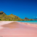 Пляжи с розовым песком: в чём их секрет?