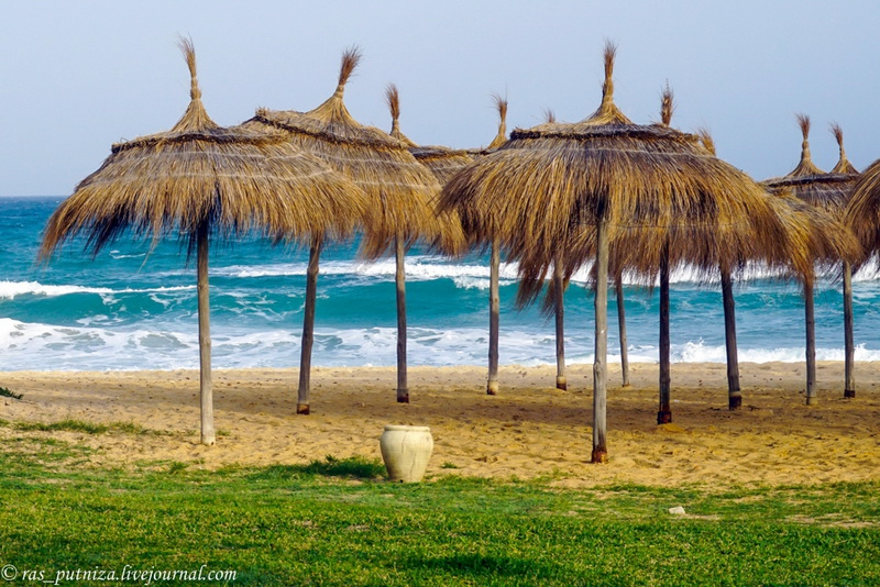 Фото Тунисские каникулы. Ясмин Хаммамет.