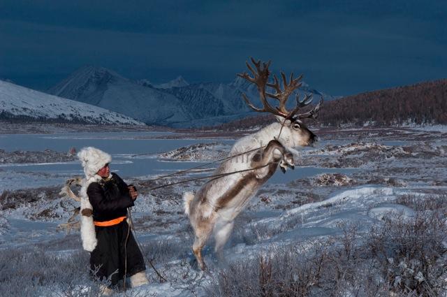Фото Как живет вымирающее племя оленеводов из Монголии