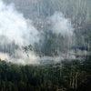 В Хабаровском крае местной жительнице выписали штраф более 6 млн рублей за поджог леса
