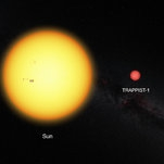7 Earth-Size Planets Orbit Dwarf Star, NASA and European Astronomers Say