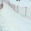В Красноярск для участия в ЧМ по лыжному ориентированию приедут представители 21 государства