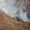 Глава Приморского края ввел особый противопожарный режим