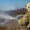 Под Красноярском потушили первый лесной пожар в этом году