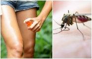 Лайфхак: Как сделать очень «вкусный» спрей, который защитит от комаров в любое время года