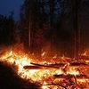 В Забайкалье и Бурятии территория лесных пожаров увеличилась в два раза