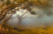 Фотография: На грани фантастики: рукотворные работы Кима Кивера, созданные при помощи аквариума, красок, воды и реди-мейдов