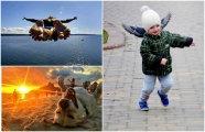 Юмор: Лови момент: 20 позитивных фотографий, от которых захватывает дух