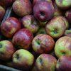 Фрукты и соки могут возрасти в цене из-за неурожая яблок в ФРГ и апельсинов в ЮАР