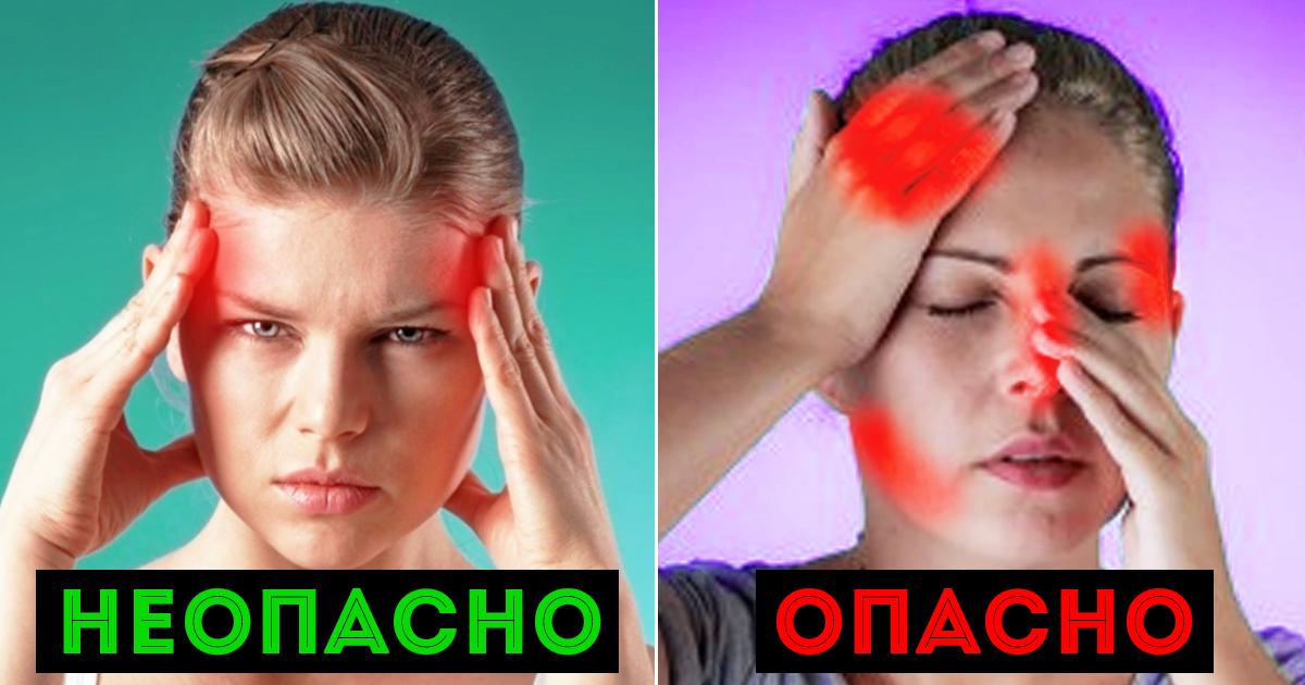 Болит голова спина живот