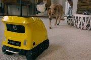 Гаджеты: Робот, который составит компанию домашним питомцам и защитит жилище