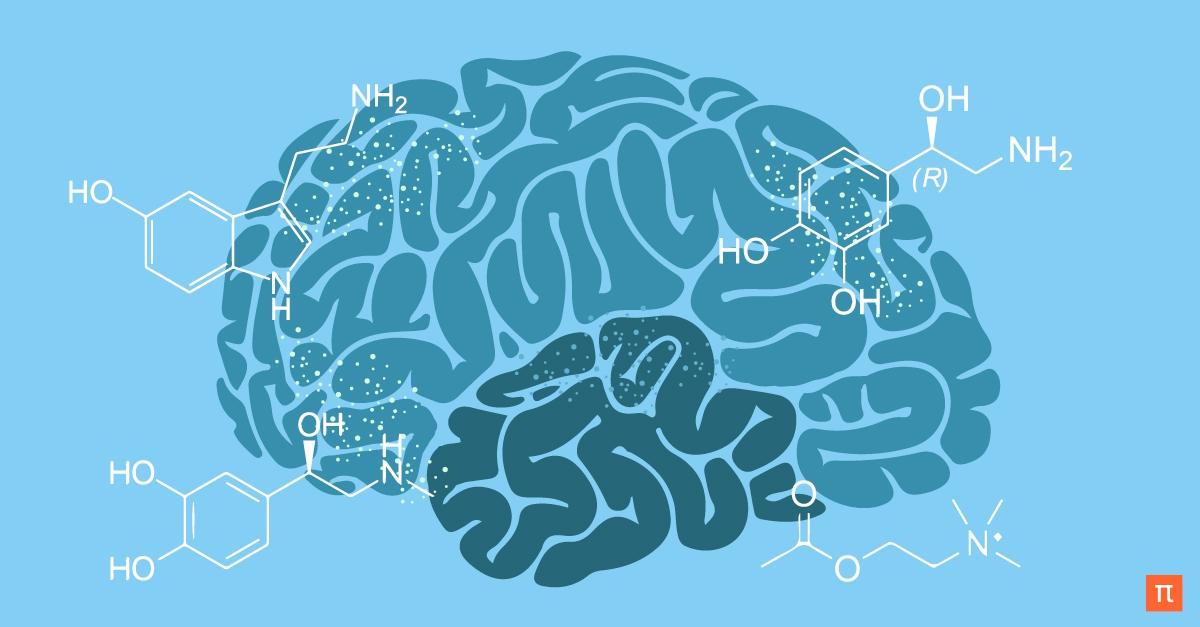 Фото Курс лекций физиолога Вячеслава Дубынина, посвященный нейромедиаторам, химической структуре мозга и механизмам формирования зависимостей