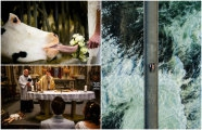 Юмор: А свадьба пела и плясала: 19  улётных фотографий, от просмотра которых останутся неизгладимые впечатления