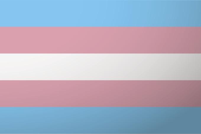 Photo of Os EUA elegeram duas mulheres trans e isso é importante demais