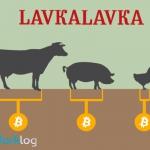 BioСoin кооператива LavkaLavka признали легальным токеном