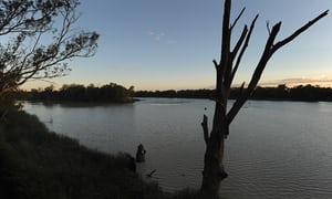 'Real jeopardy': independent panel lays into Murray-Darling basin management