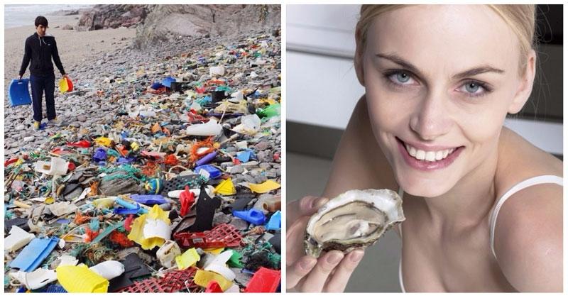 Фото Любите морепродукты? Тогда вы регулярно едите пластик