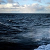 В районе исчезновения рыболовного судна в Японском море обнаружили два спасательных жилета