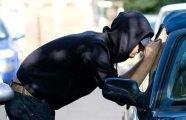 Автомобили: Как мошенники «разводят» водителей, и что необходимо делать, чтобы избежать подобного