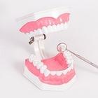 Кровь и зубная паста: Что делать, если болит десна