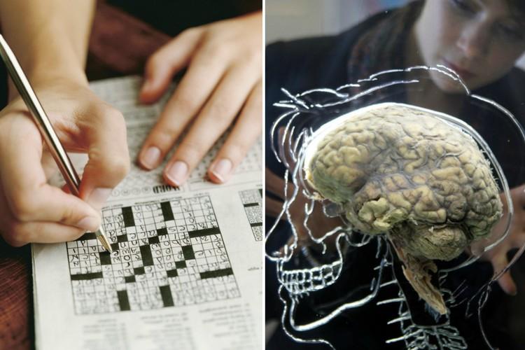 Непросвещенность: мифы о мозге, которым пора перестать верить