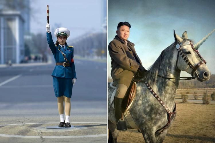 Единороги и другие странности, которые есть только в Северной Корее