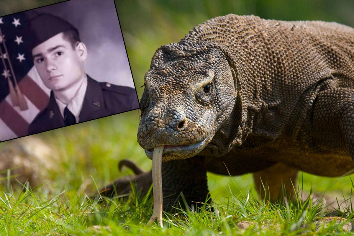 Бывшего солдата съели семь варанов, которых он держал в качестве питомцев