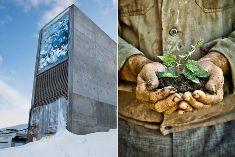 Что собой представляет хранилище судного дня в Норвегии