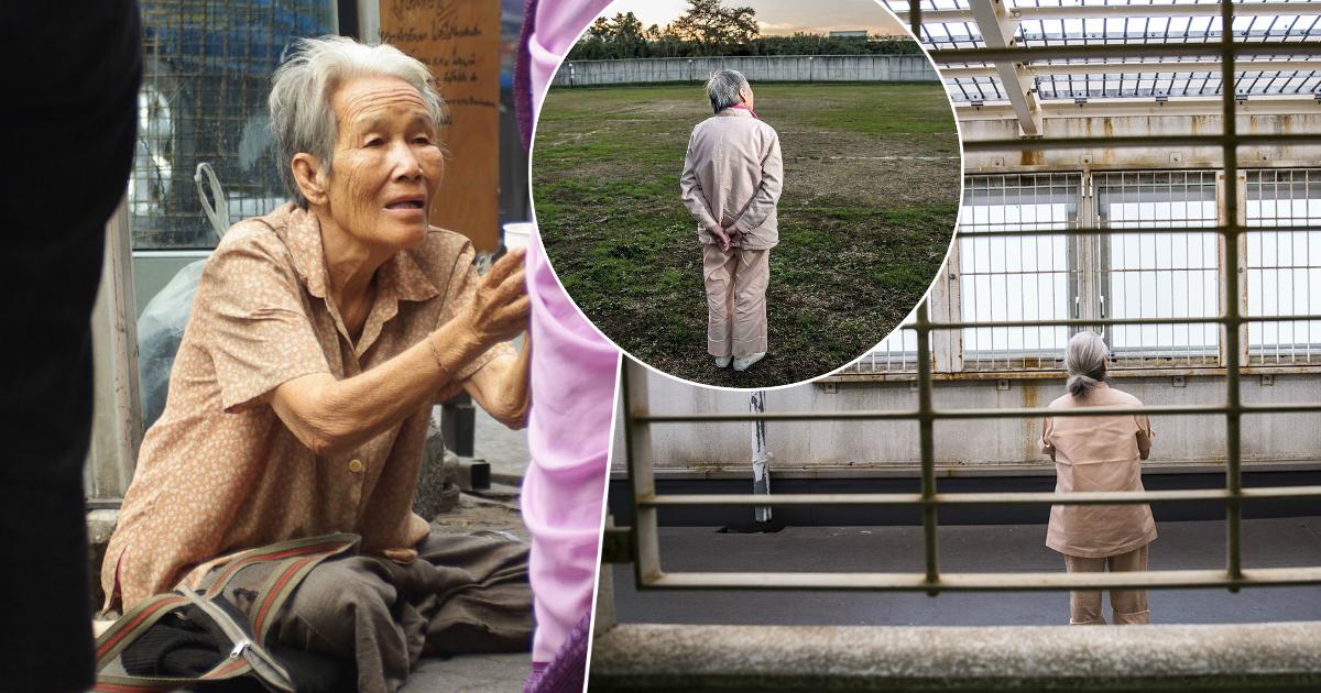 Фото Зачем пожилые люди в Японии совершают преступления, пытаясь попасть в тюрьму