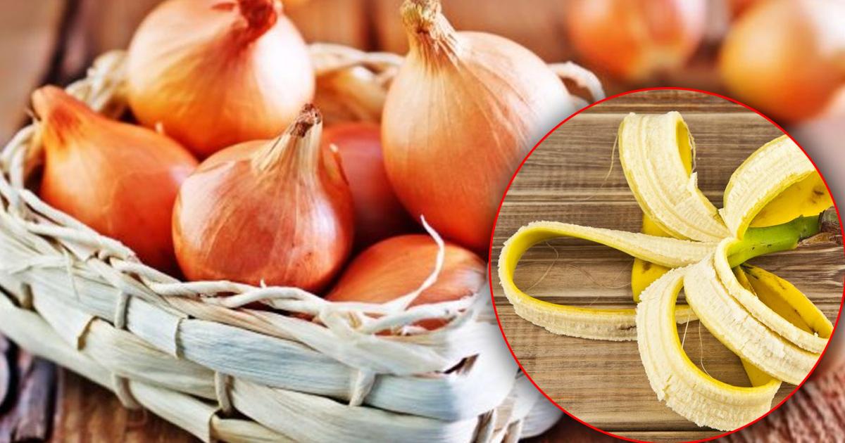 Необычные способы с пользой задействовать пищевые отходы