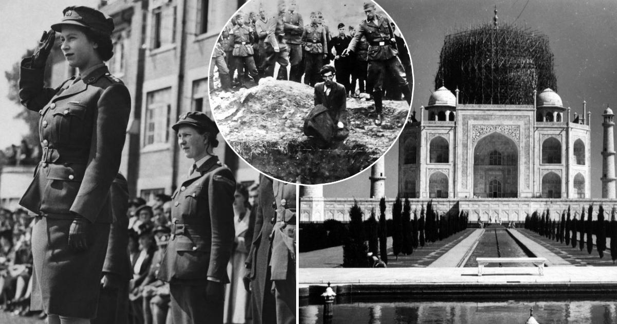 Цена победы: факты о Второй мировой войне, которых многие не знали