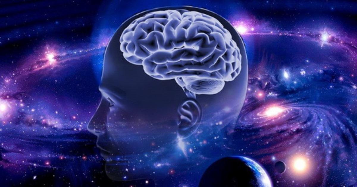 Фото Как работает мозг человека? Зависят ли умственные способности от массы мозга?
