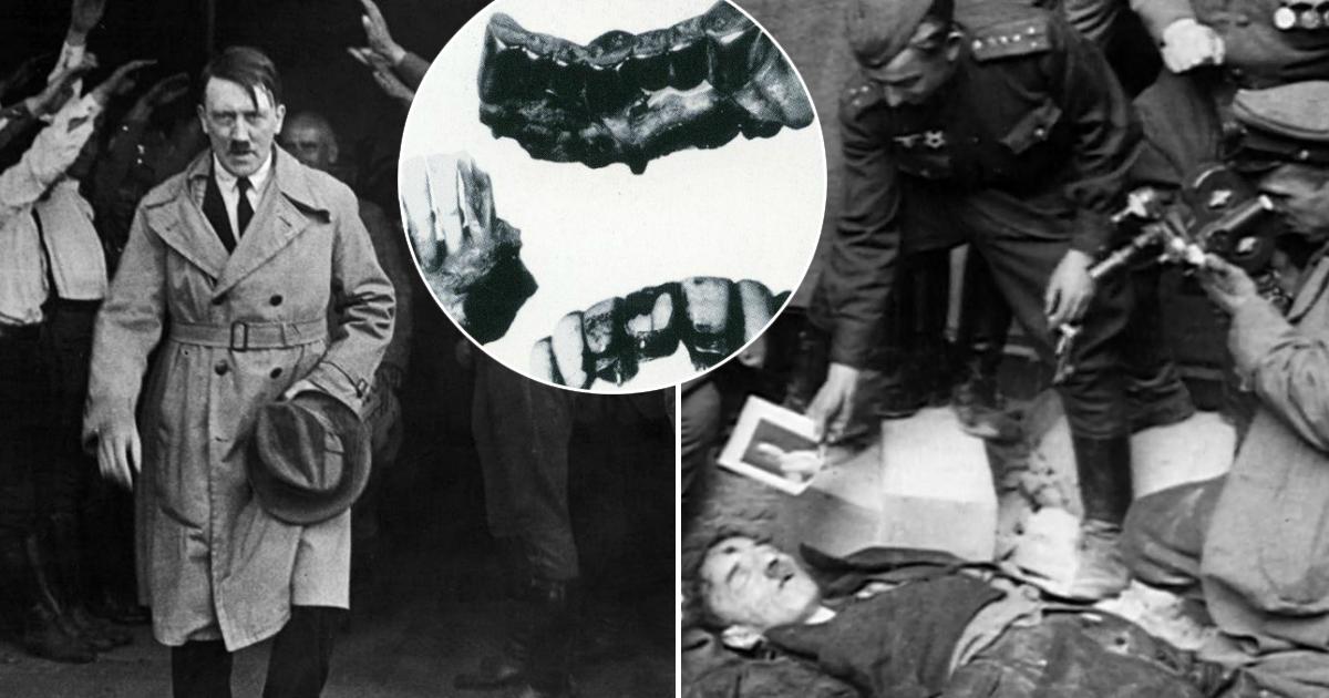 Фото Погиб или сбежал? Ученые развеяли все мифы о смерти Гитлера