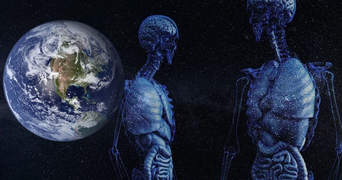 Фото Удушье, астероид или глупость: может ли человечество от этого погибнуть?