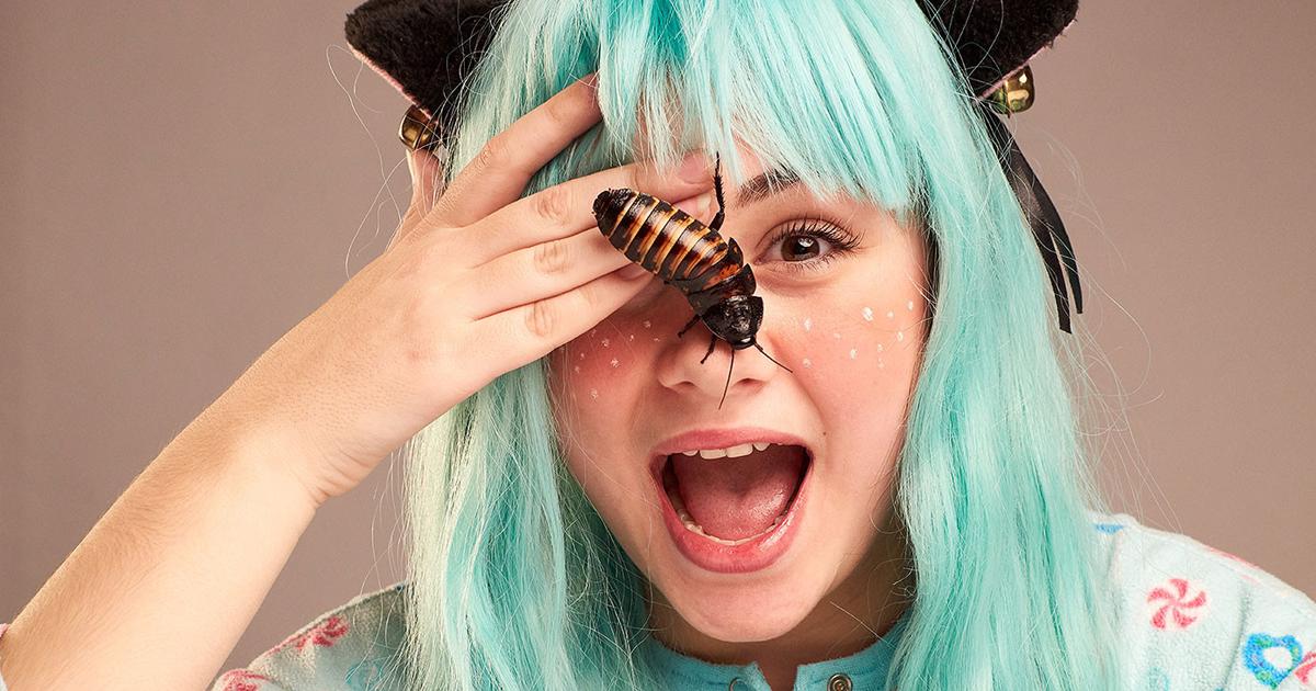 Фото Ученые рассказали, почему человеческое ухо - лучший дом для тараканов