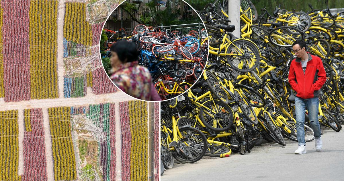 Фото Не делай добра: почему прокат велосипедов в Китае вызвал экологическую катастрофу