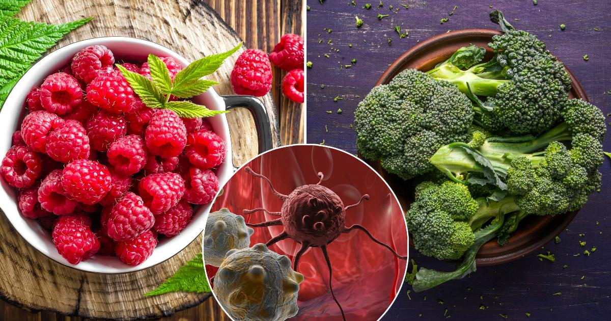 Фото Полюбите брокколи: продукты, способные защитить от рака