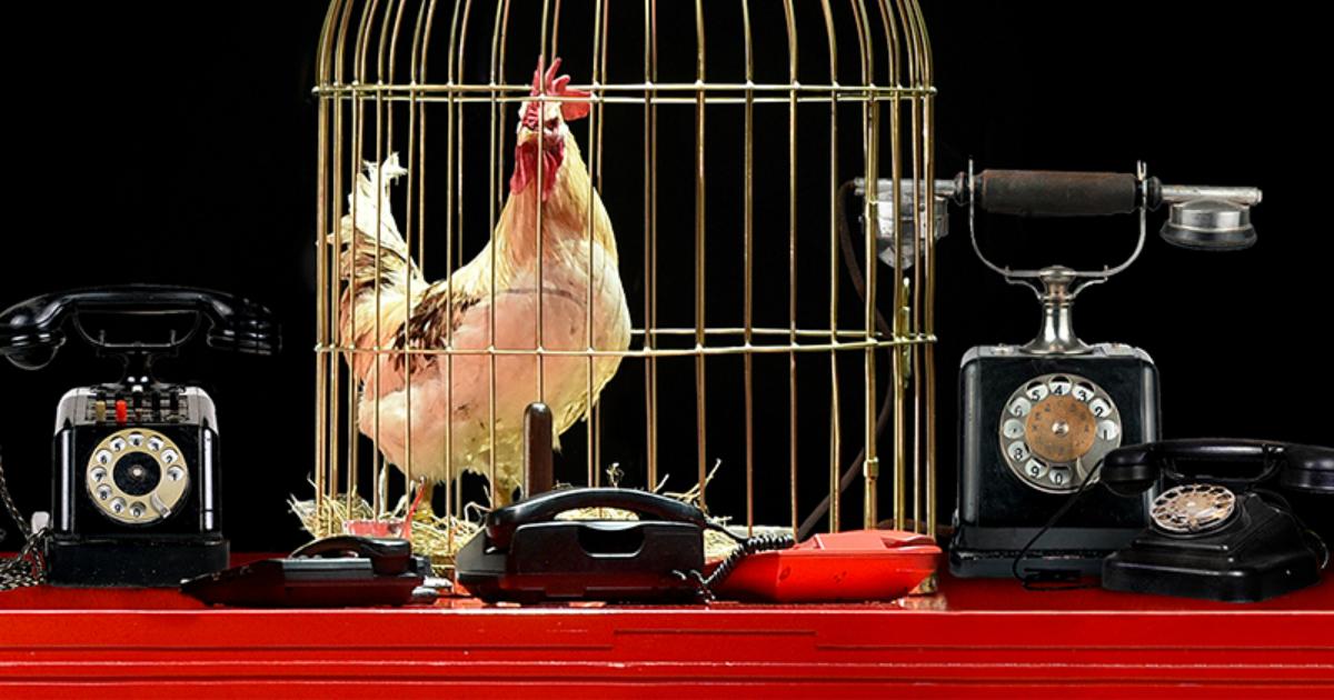 «Геликон-опера» представит премьеру оперы Римского-Корсакова «Золотой петушок»