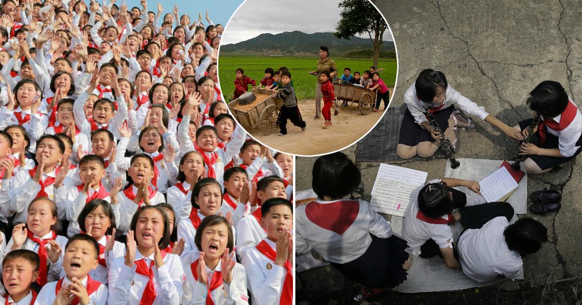 Фото Лишенные детства: как воспитывают детей в Северной Корее