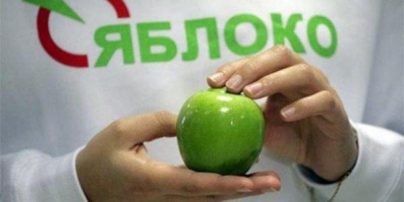 Фото Выборы-2018. Ярославль: что происходит
