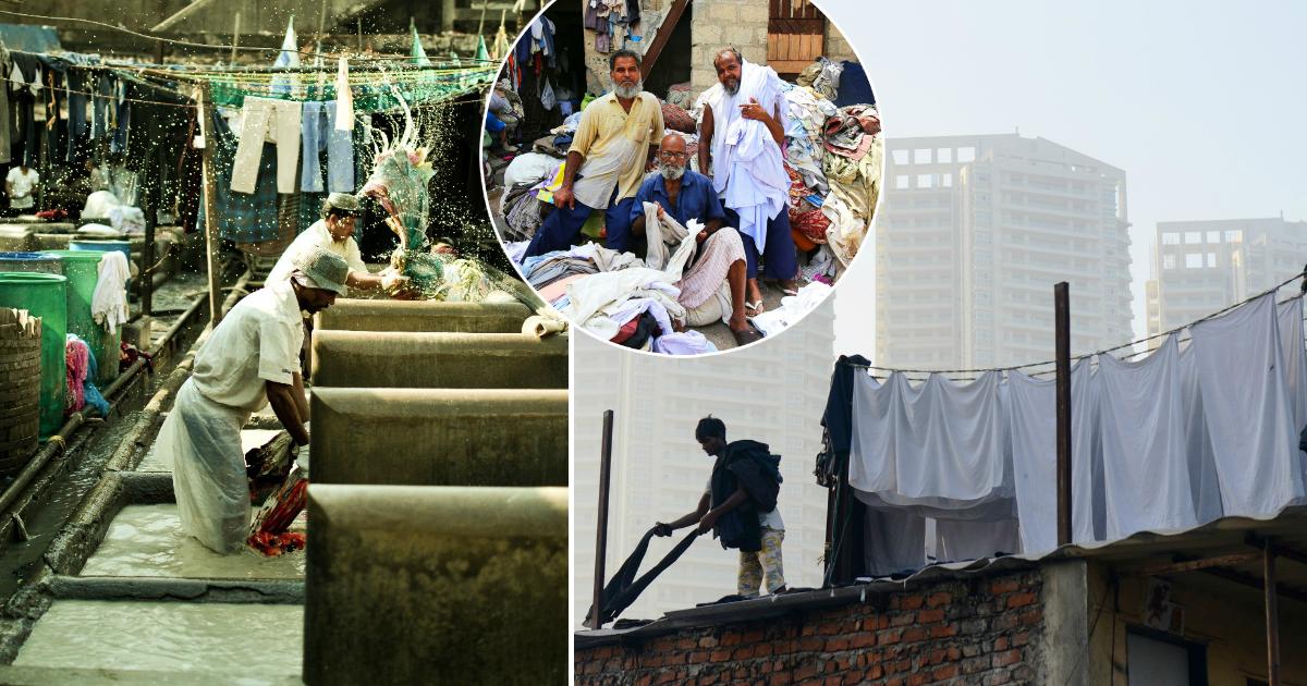 Фото Каста неприкасаемых: как работают индийские прачечные под открытым небом
