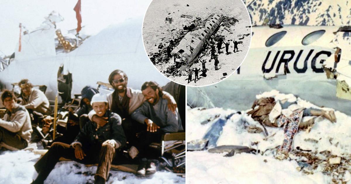Ешь своих: трагическая история спасения после крушения самолета в горах