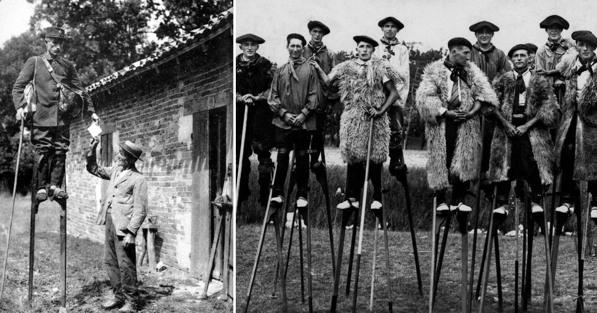 Фото Почему жители юго-запада Франции долгое время перемещались на ходулях