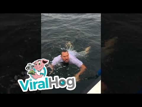 Photo of Overexcited Man Jumps In Water For Fish After It Becomes Unhooked