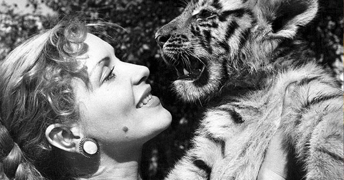 Фото Королева тигров: как сложилась судьба известной советской дрессировщицы