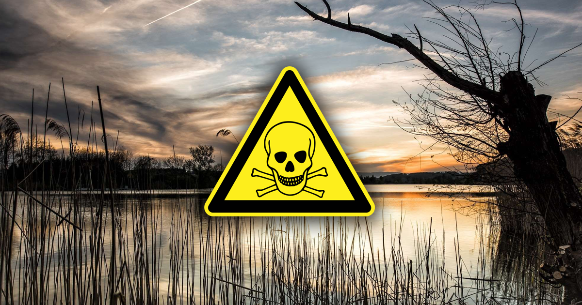 Фото Озеро-убийца: что скрывает странный водоем в Бурятии?