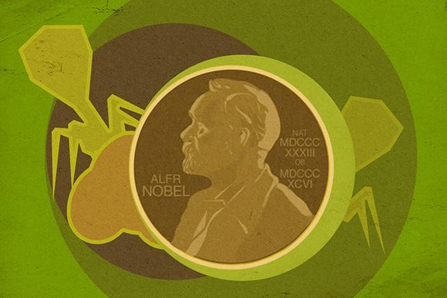 Фото Нобелевская премия по химии — 2018: направленная эволюция белков и фаговый дисплей