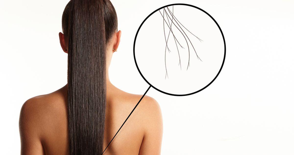 Посмотрите на кончики! 5 сигналов волос о вашем здоровье