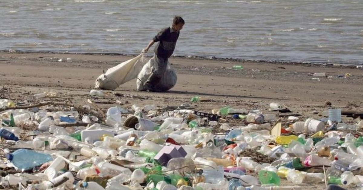 Фото Раздельный сбор мусора - необходимость или трата времени?