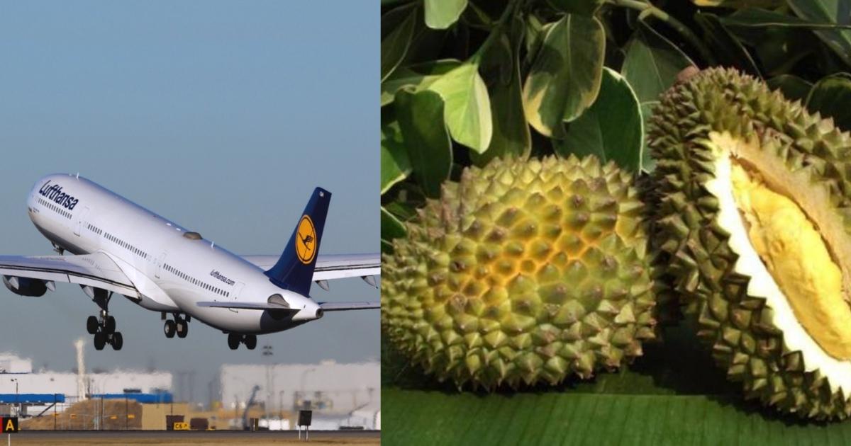 Фото Пассажиры в Индонезии отказались лететь в самолёте из-за ужасного запаха